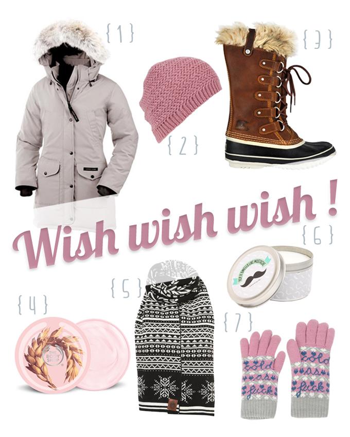 wish wish-1