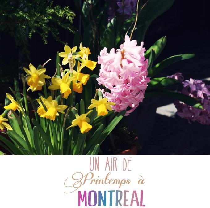 printemps-montreal