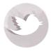 bouton-twitter
