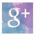 google-252B-bouton
