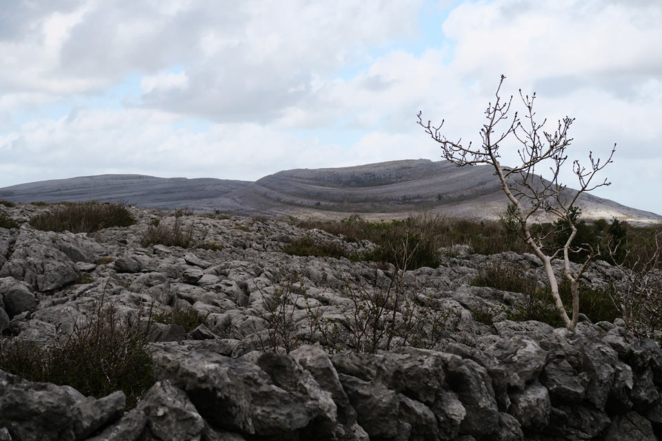 national park burren ireland